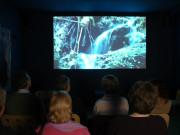 Kino im Noctalis - Welt der Fledermäuse in Bad Segeberg