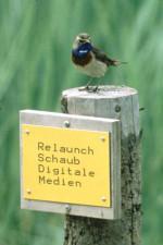 Relaunch Schaub Digitale Medien